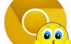 Canary, el nuevo pájaro de Google