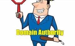 Se puede medir la Autoridad del dominio?