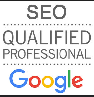 Profesional SEO Calificado