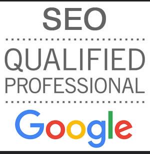 Profesional SEO calificado con amplia experiencia