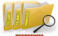 Taxonomias y posicionamiento web